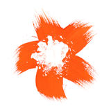 szczotkarskiego kwiatu pomarańczowa farba Zdjęcie Stock