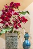 szczotkarskiego kwiatu storczykowa obrazu czerwień storczykowa Fotografia Royalty Free