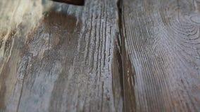 Szczotkuje z farbą w górę starej drewnianej deski dalej zbiory wideo