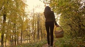 Szczupły brunetki dziewczyny odprowadzenie w jesień lesie trzyma pyknicznego kosz 4K steadicam strzał zdjęcie wideo