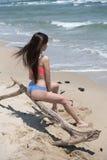 Szczupły dziewczyny odzieży bikini, siedzi na nieżywym tree& x27; s gałąź przy plażą Fotografia Stock