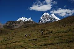 szczytów Peru śnieg Obrazy Royalty Free