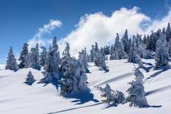 Szczyt góra Zdjęcie Stock