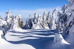 Szczyt góra Zdjęcie Royalty Free