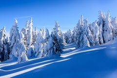 Szczyt góra Obraz Stock