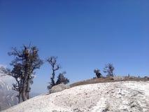 Szczyt góra w Himachal Pradesh, India Fotografia Stock