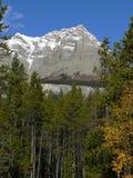 szczyt górski Zdjęcia Stock