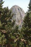 Szczyt i drzewo przy Imbros wąwozem crete Grecja Zdjęcie Royalty Free