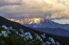 Szczyt z śniegiem w wieczór świetle słonecznym fotografia stock
