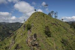 Szczyt zieleni montains Ella, Sri Lanka Obrazy Stock