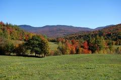 Szczytowego sezonu Vermont pole Obrazy Royalty Free