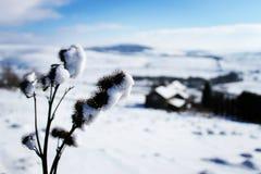 Szczytowy Gromadzki śnieg zdjęcia stock