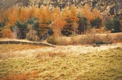 Szczytowy Gromadzki Dovestone rezerwuaru Greenfield, Anglia, UK obraz royalty free