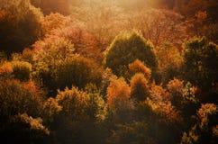 Szczytowy Gromadzki Dovestone rezerwuaru Greenfield, Anglia, UK zdjęcia stock