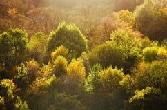 Szczytowy Gromadzki Dovestone rezerwuaru Greenfield, Anglia, UK obrazy stock