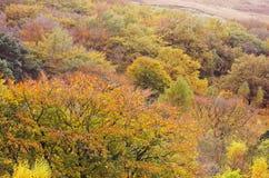 Szczytowy Gromadzki Dovestone rezerwuaru Greenfield, Anglia, UK fotografia stock