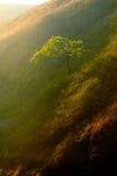 Szczytowy Gromadzki park narodowy Egland Fotografia Stock