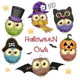 Sześć Ślicznych Halloweenowych sów ilustracji