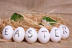 Sześć jajek z rzędu Zdjęcie Stock