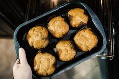 Sześć muffins na wypiekowym prześcieradle od piekarnika obrazy stock