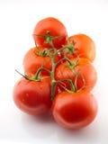 sześć pomidorów Fotografia Royalty Free