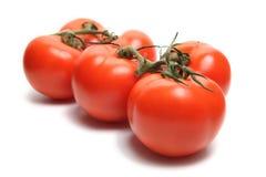Sześć Pomidorów obrazy stock