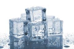 Sześć rozciekłych kostek lodu Zdjęcie Royalty Free