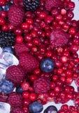 sześcian owoców podobszaru ices małego obraz royalty free