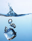 sześcianu lodu pluśnięcie Zdjęcie Royalty Free