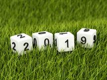 Sześciany z 2019 nowy rok znakiem na trawie ilustracja wektor