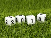 Sześciany z 2018 nowy rok znakiem na trawie ilustracja wektor