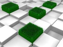 Sześciany z trawą Obrazy Royalty Free