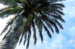 Sześciokąt abstrakcjonistyczna poligonalna tekstura nad obrazkiem palma Obrazy Royalty Free
