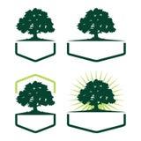 Sześciokąta Dębowego drzewa ekologii sylwetki logo różnica ilustracji
