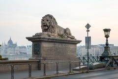Szechenyi bro i den Budapest Ungern Härliga Danube River förtöjd sikt för nattportship Fotografering för Bildbyråer