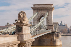The Szechenyi Chain Bridge on the River Danube in Budapest, Hungary Royalty Free Stock Photography