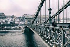 Szechenyi den Chain bron i Budapest, Ungern Royaltyfri Fotografi