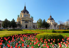 Szechenyi Spa with flower - Budapest, Hungary Stock Photography
