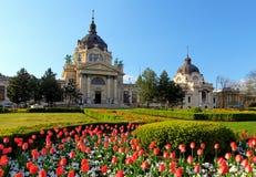 Szechenyi Spa with flower - Budapest, Hungary Stock Photography