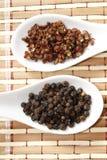 Szechuan和黑胡椒 免版税库存图片