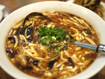 Szechuan Hot and Sour Soup Stock Photos