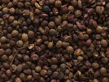 Szechuan pepper Royalty Free Stock Photo