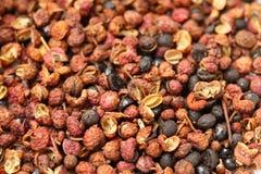 Szechuan pepper Royalty Free Stock Image