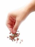 Szechuan Pepper In Hand Royalty Free Stock Image