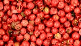 Szechuan pepper stock footage