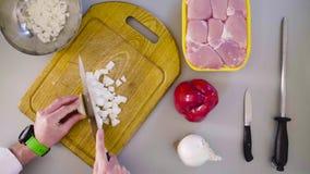 Szef kuchni gotuje kurczaka naczynie Tnąca cebula zbiory wideo