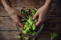 Szef kuchni kulinarna sałatka Fotografia Royalty Free