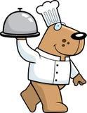 szef kuchni pies Obraz Royalty Free