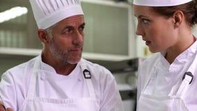 Szef kuchni pokazuje kolega zawartość wtedy ono uśmiecha się przy kamerą garnek zbiory