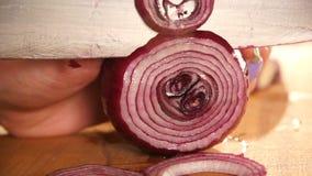 Szef kuchni pokrajać cebuli Nóż, tnąca deska ciąć warzywa ręka kucharz zbiory